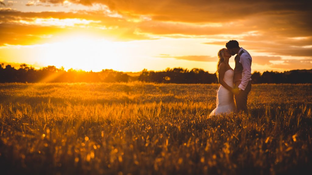 Bride and Groom portrait shot in a wheat filed at sunset.